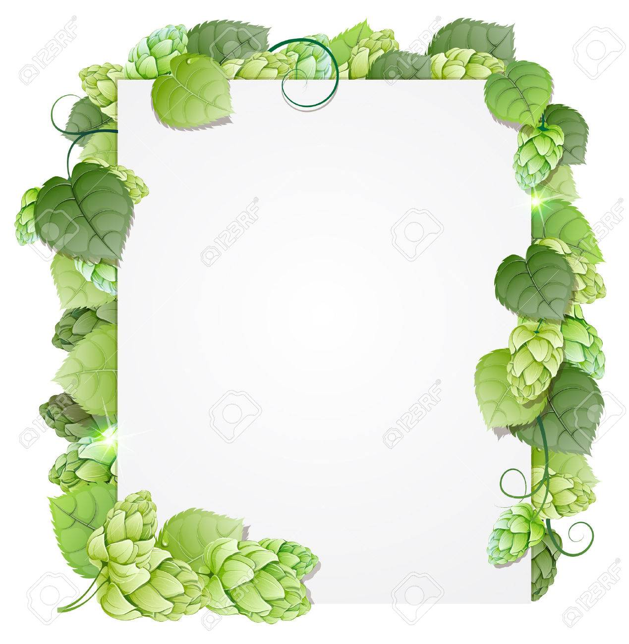 Green hops branch on white background. Abstract floral frame - 32453451