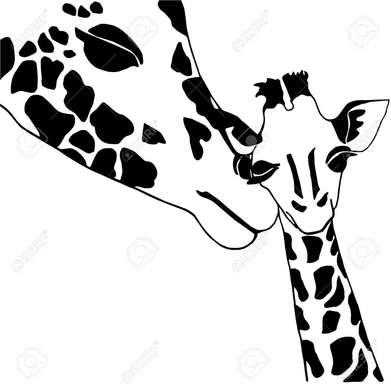 Giraffe Familie Färbung, Solated Auf Weißem Hintergrund Lizenzfrei ...
