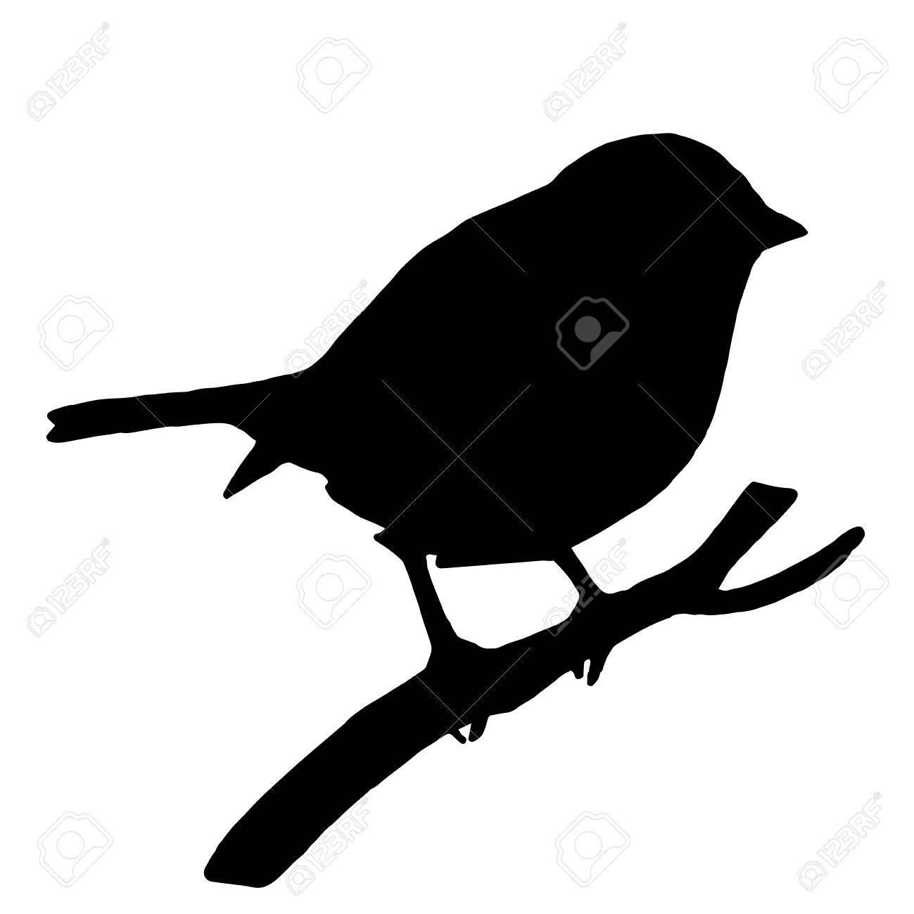 High quality original Silhouette bird on ash branch - 63249101