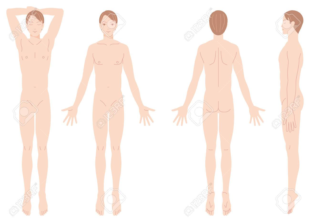 Male body removal of hair - 40856194