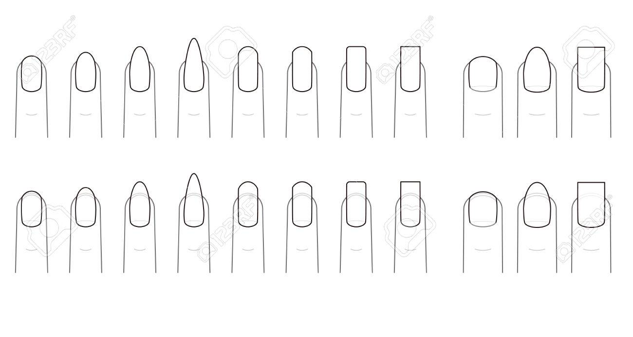 Nail shape of the fingernail royalty free cliparts vectors and nail shape of the fingernail stock vector 49930532 pooptronica Choice Image