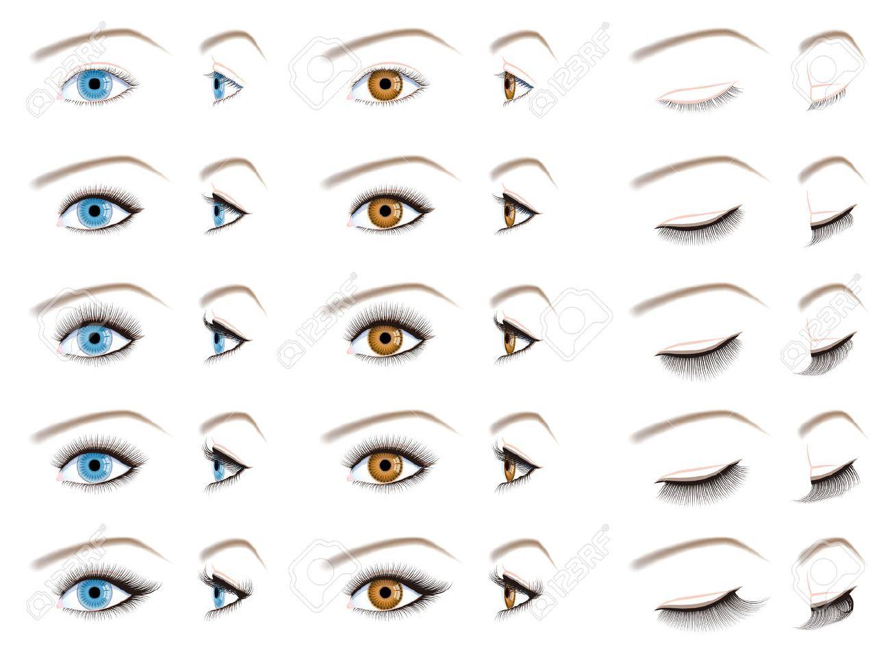 Eyelash extensions, false eyelashes type - 56784293