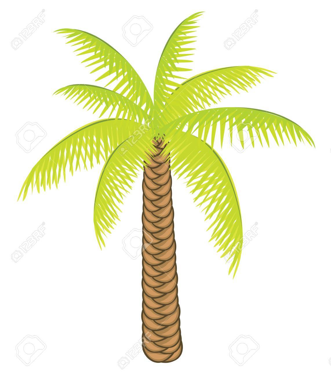 Vector color palm tree on a white background for your design Stock Vector - 12763759