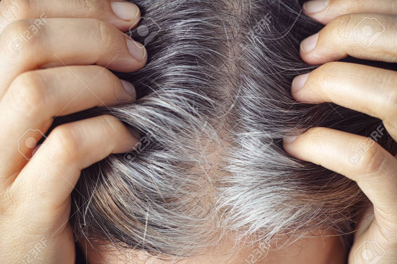 A woman showing her gray hair roots. Going gray concept. Close up. - 152474699