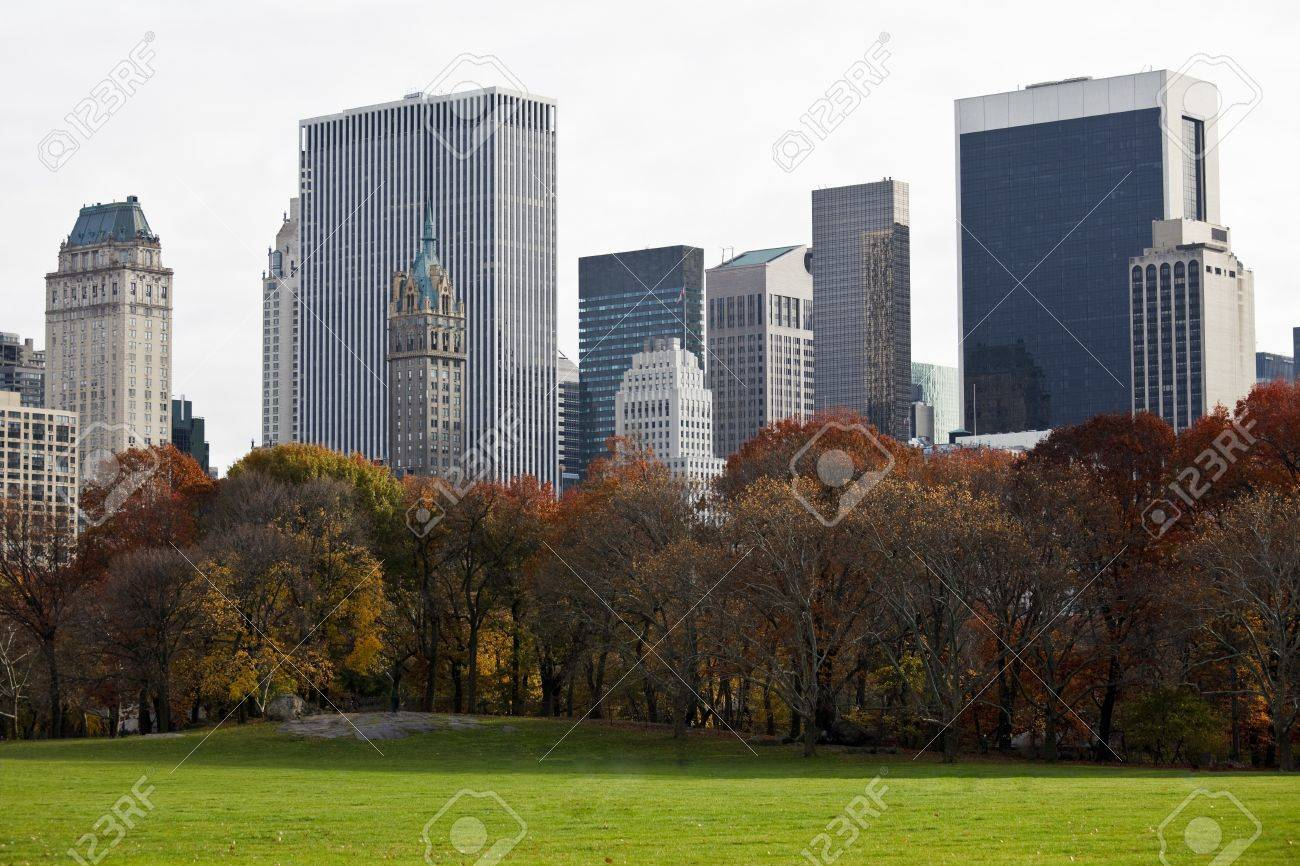 Beautiful buildings in Manhattan. View from Central Park. New York. USA. Stock Photo - 10002664