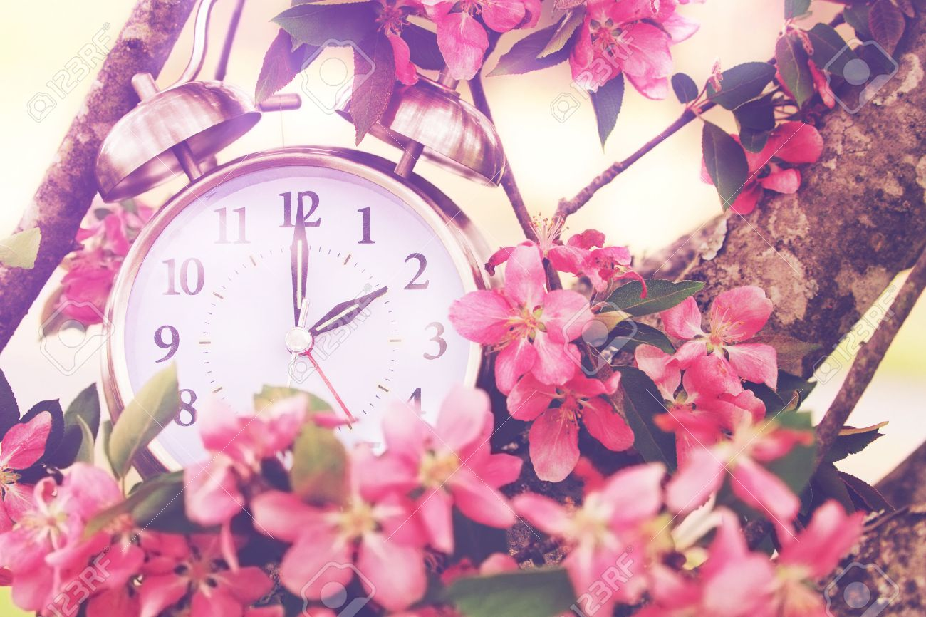 spring time stock photos u0026 pictures royalty free spring time
