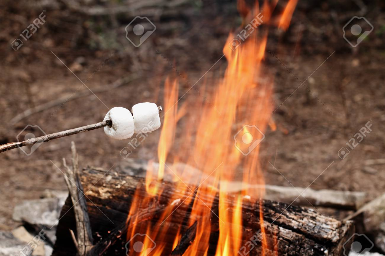 Image result for toasting marshmallows