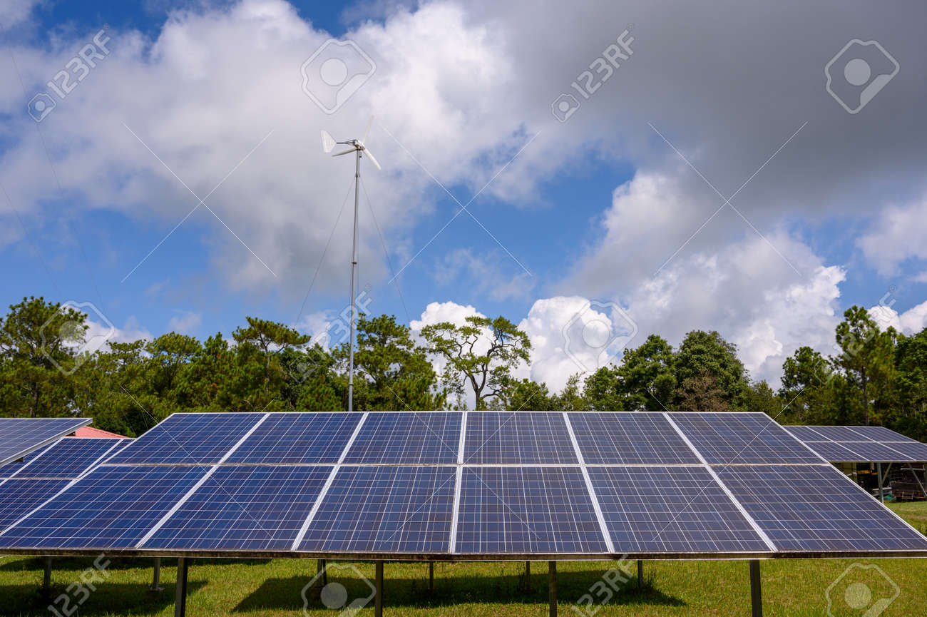 Special solar cells that have To change energy from sunlight Into electrical energy Clean energy That is environmentally friendly - 142752850