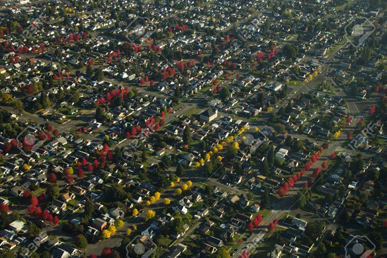 Rows of different colored trees line streets in a neighborhood Stock Photo - 11078801