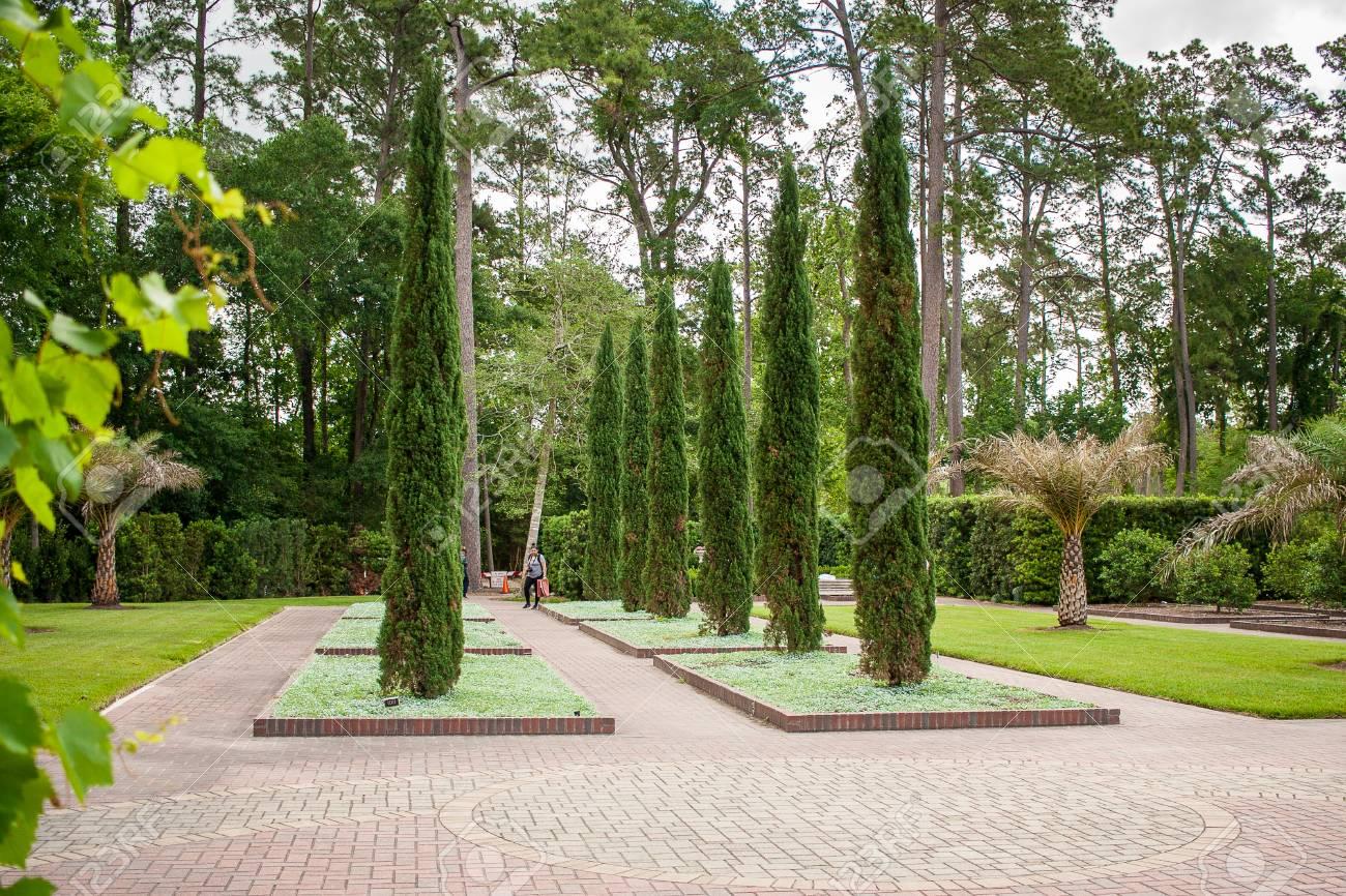 April 2017, Houston, Texas: A Woman Enjoys The Mercer Arboretum Botanical Gardens  In
