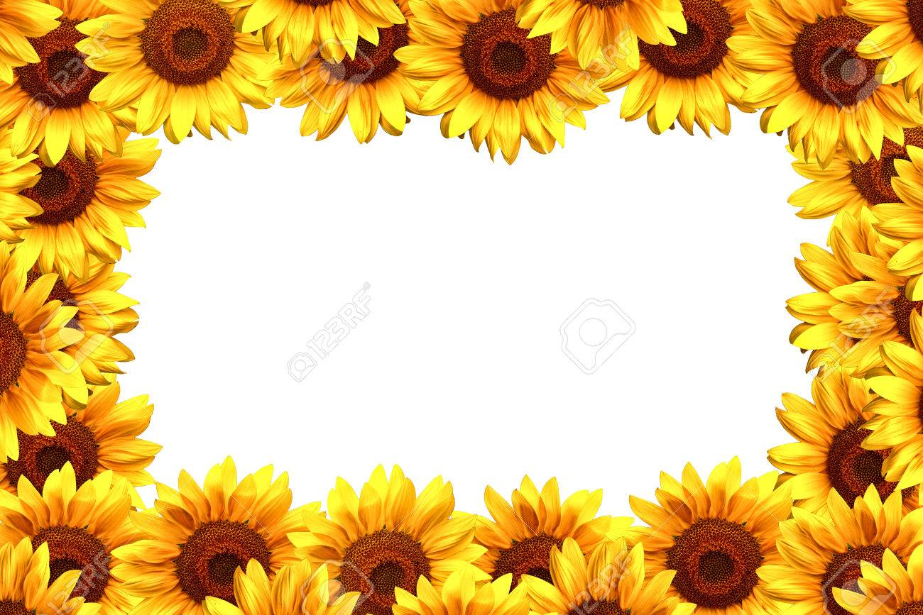 Awesome beautiful flower borders and frames mold top wedding gowns exelent beautiful flower borders and frames pattern best evening izmirmasajfo