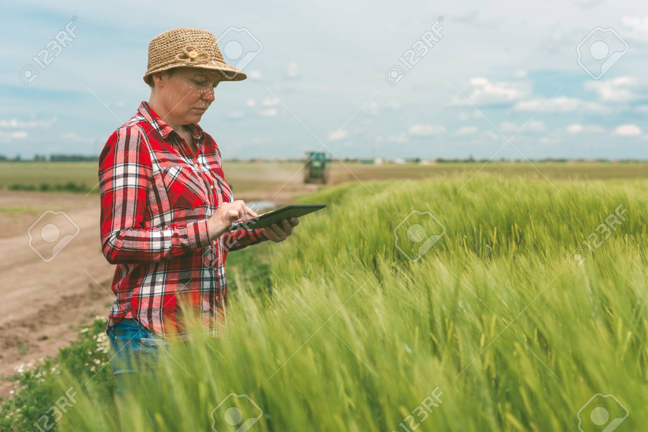 Responsible Smart Farming Using Modern Technology In Agricultural Activity Female Farmer Agronomist With Digital