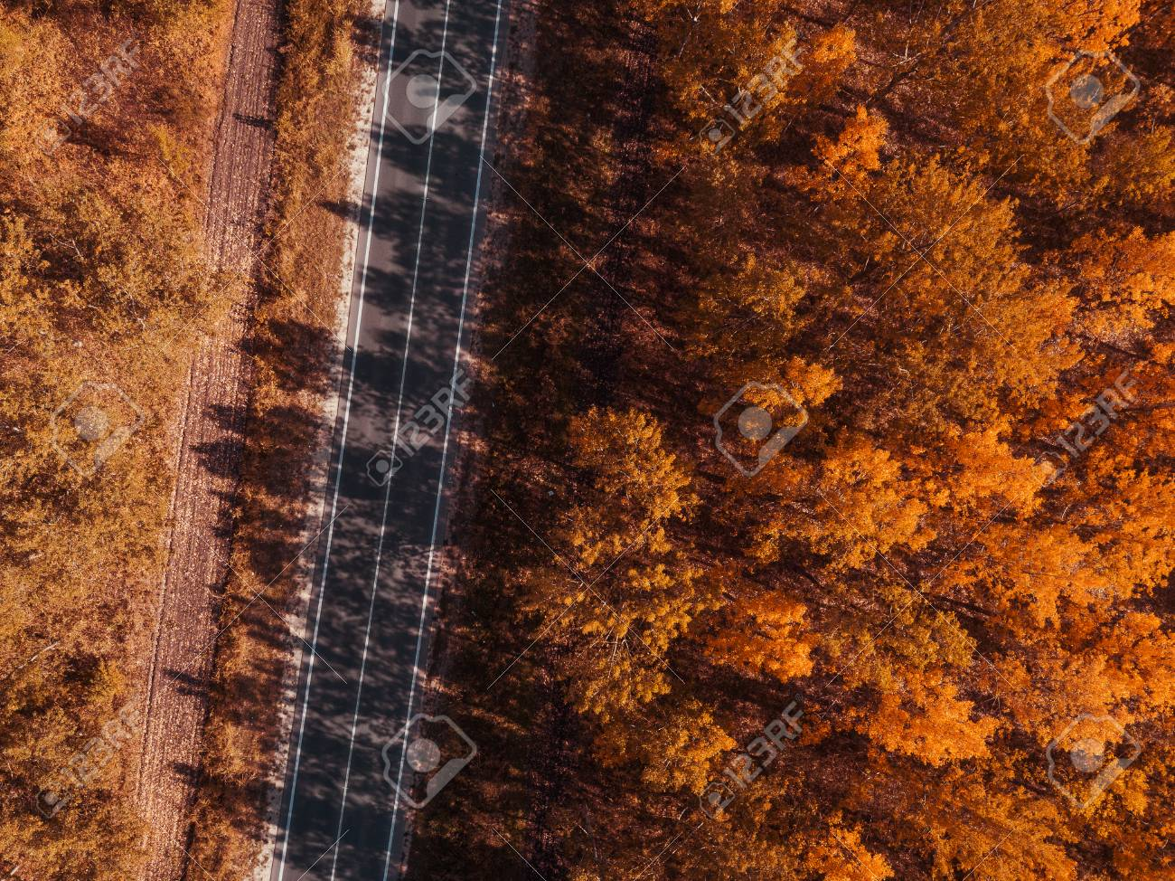 Aerial view of empty road through forest in autumn, indian summer