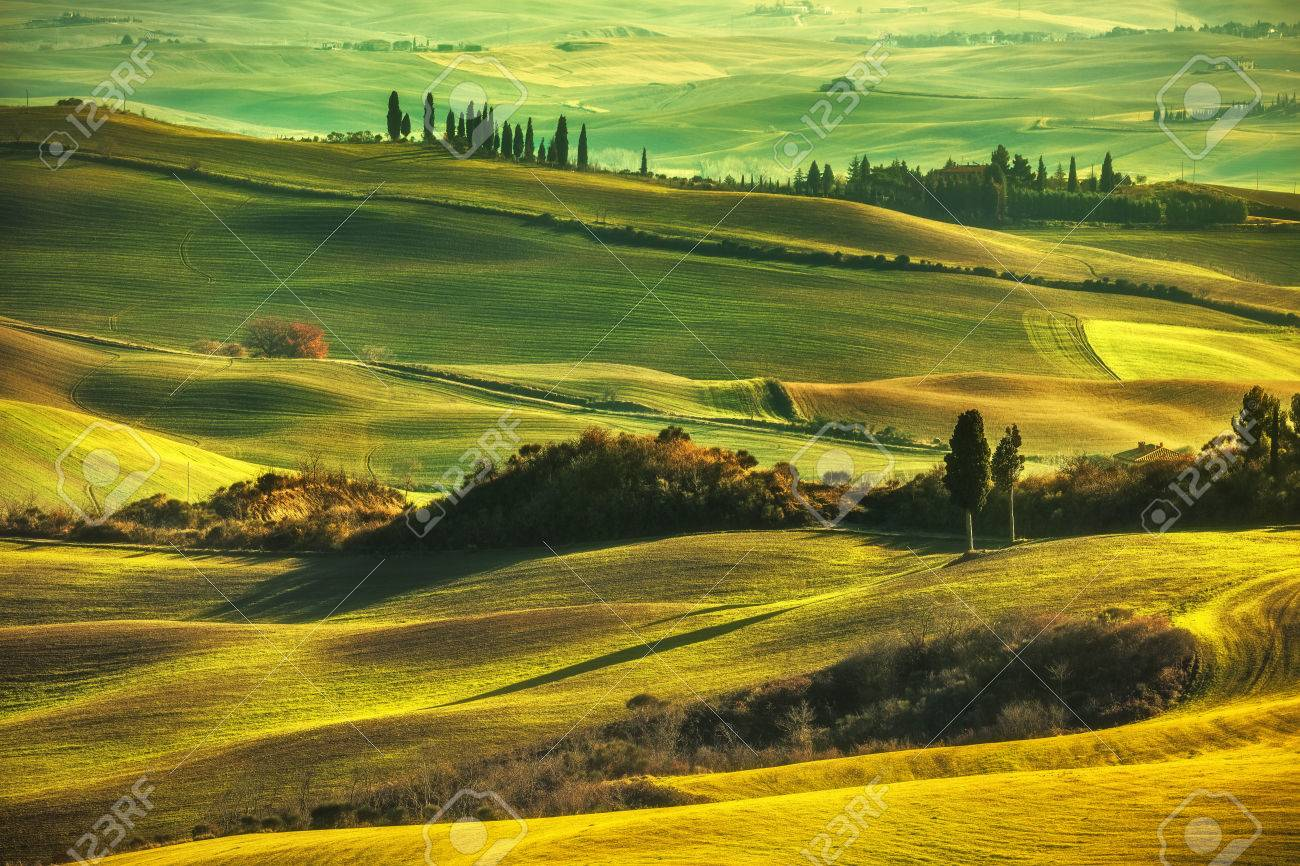 Tuscany spring, rolling hills on misty sunset. Rural landscape. Green fields and farmlands. Italy, Europe - 51286484