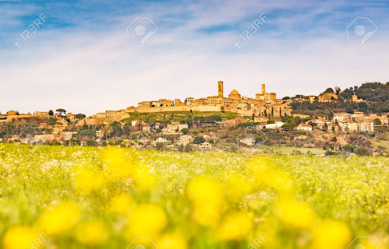 Tuscany Volterra Town Skyline And Field Of Yellow Flowers Out