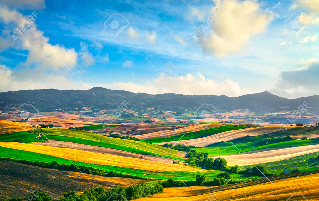 Tuscany countryside panorama, rolling hills and green fields at sunset. Santa Luce, Pisa Italy, Europe - 154014651