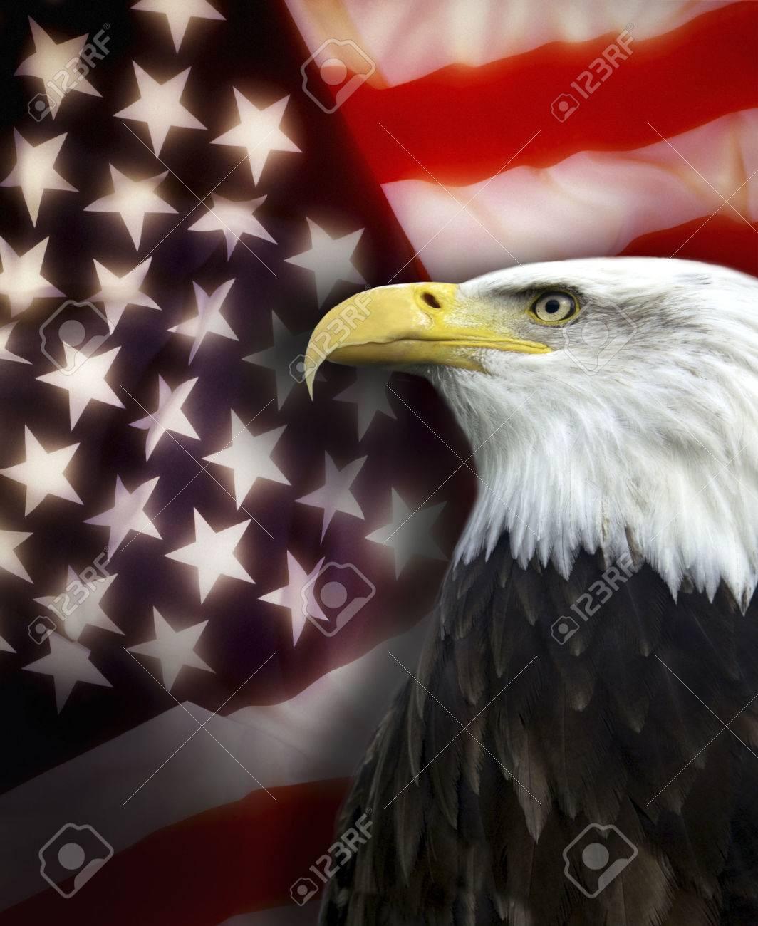 Patriotic symbols of the United States of America - 24528432