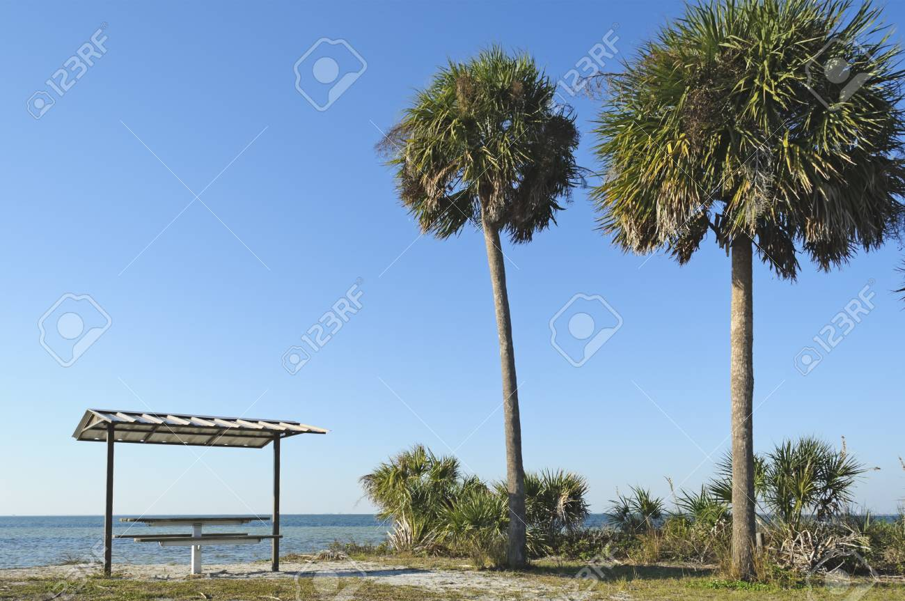 E. G. Simmons State Park Ruskin Florida USA Stock Photo - 9302696