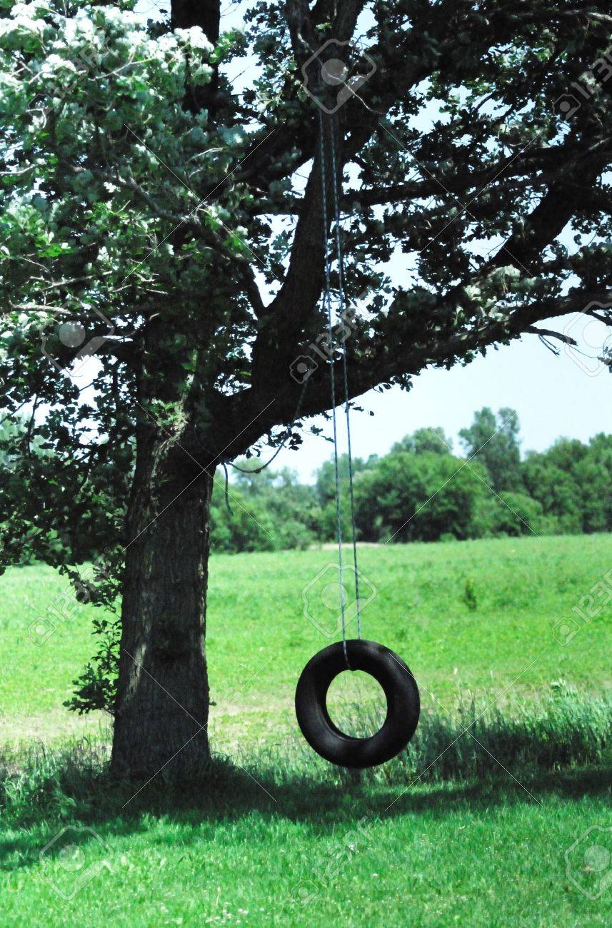 Old Tire Swing in the Shade Stock
