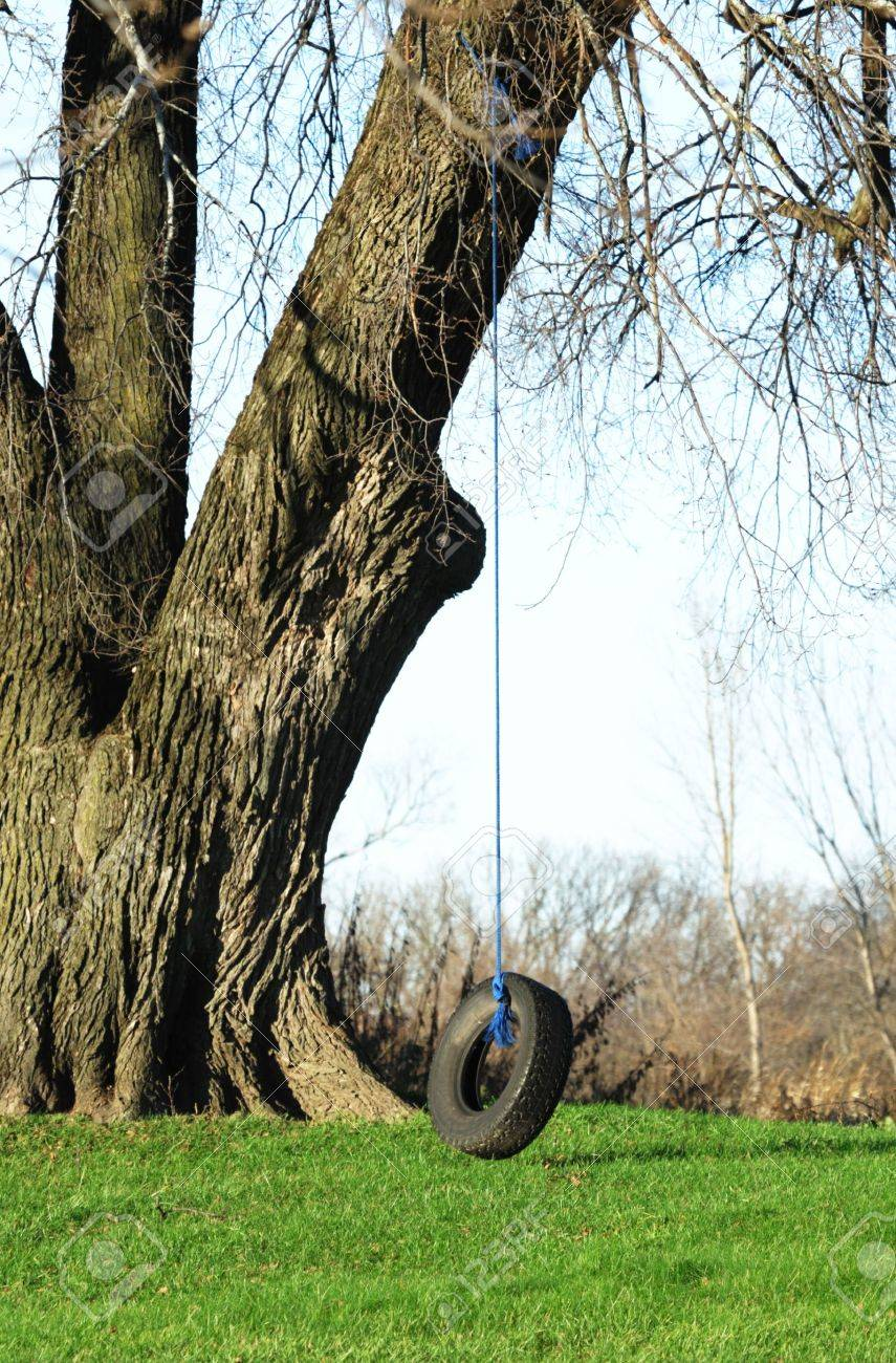 Stock Photo Tire Swing and Old