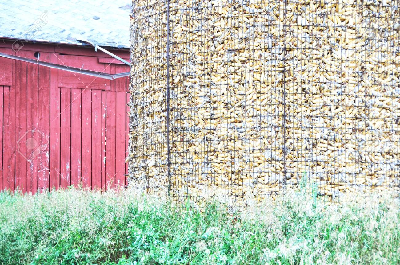 Barn And Corn Crib Stock Photo, Picture And Royalty Free Image ...