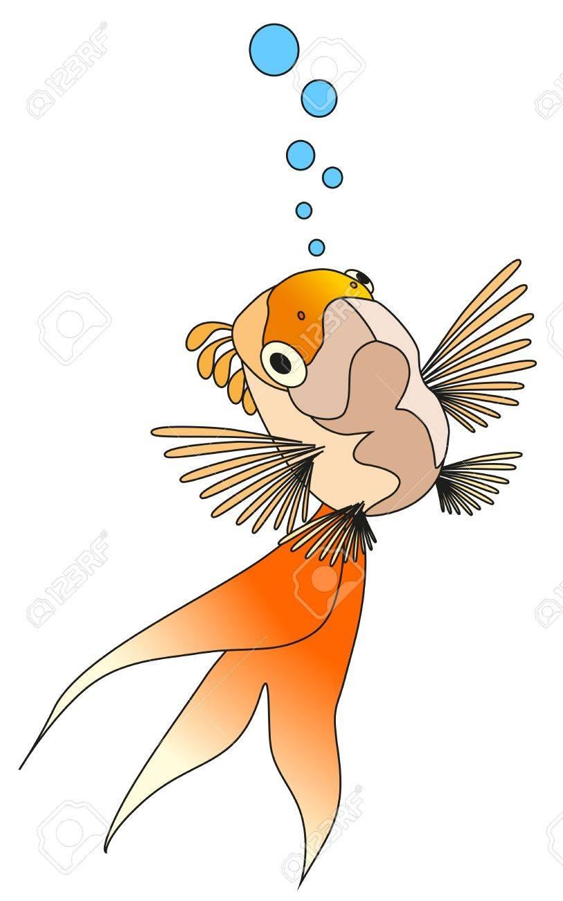 goldfish Stock Vector - 10200163