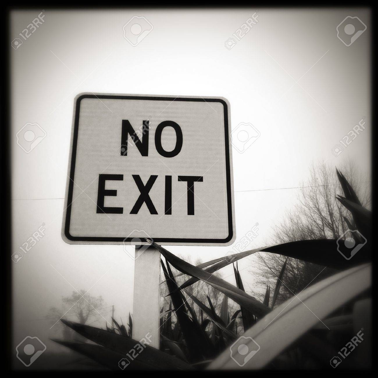 No exit sign Stock Photo - 21035453
