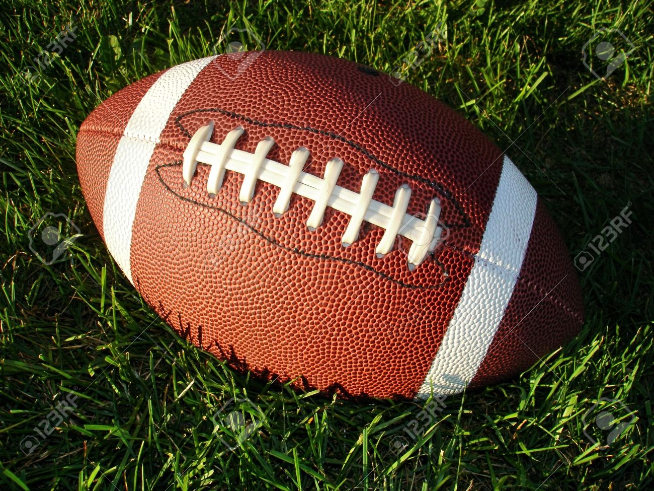Closeup view of a football on long grass in the sun. Stock Photo - 3595741