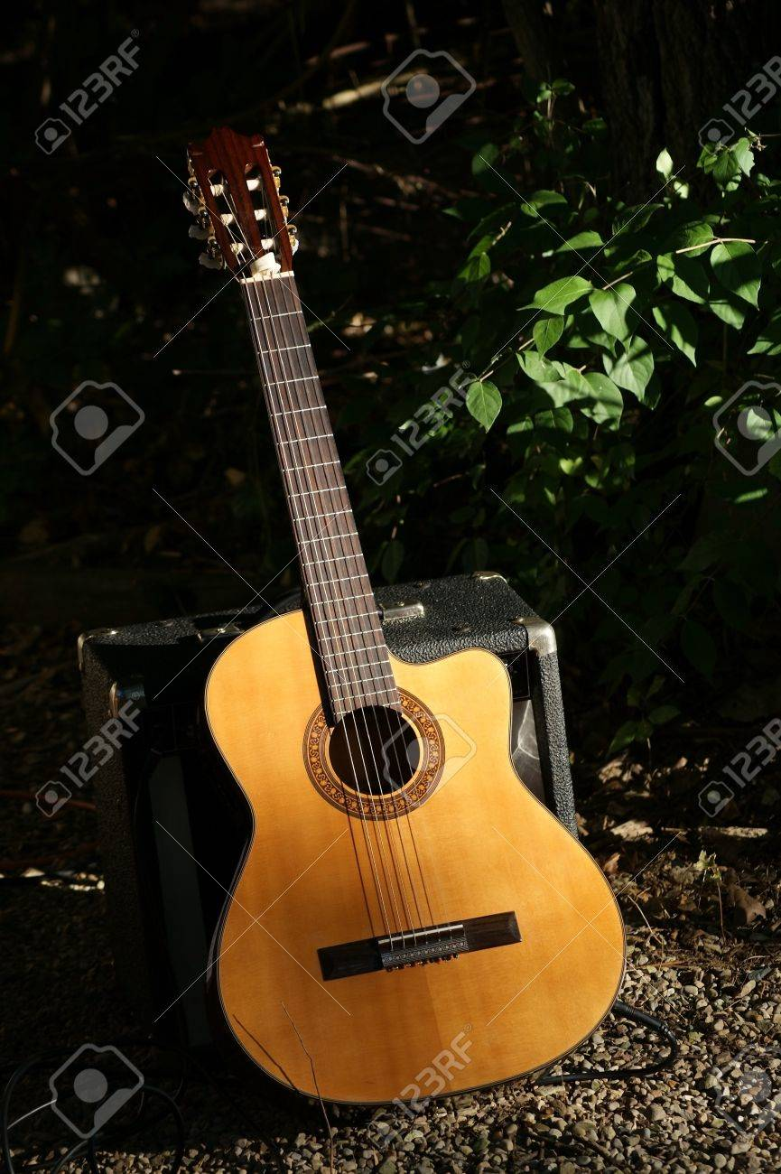 View of a country guitar in a rustic setting. Stock Photo - 8605034