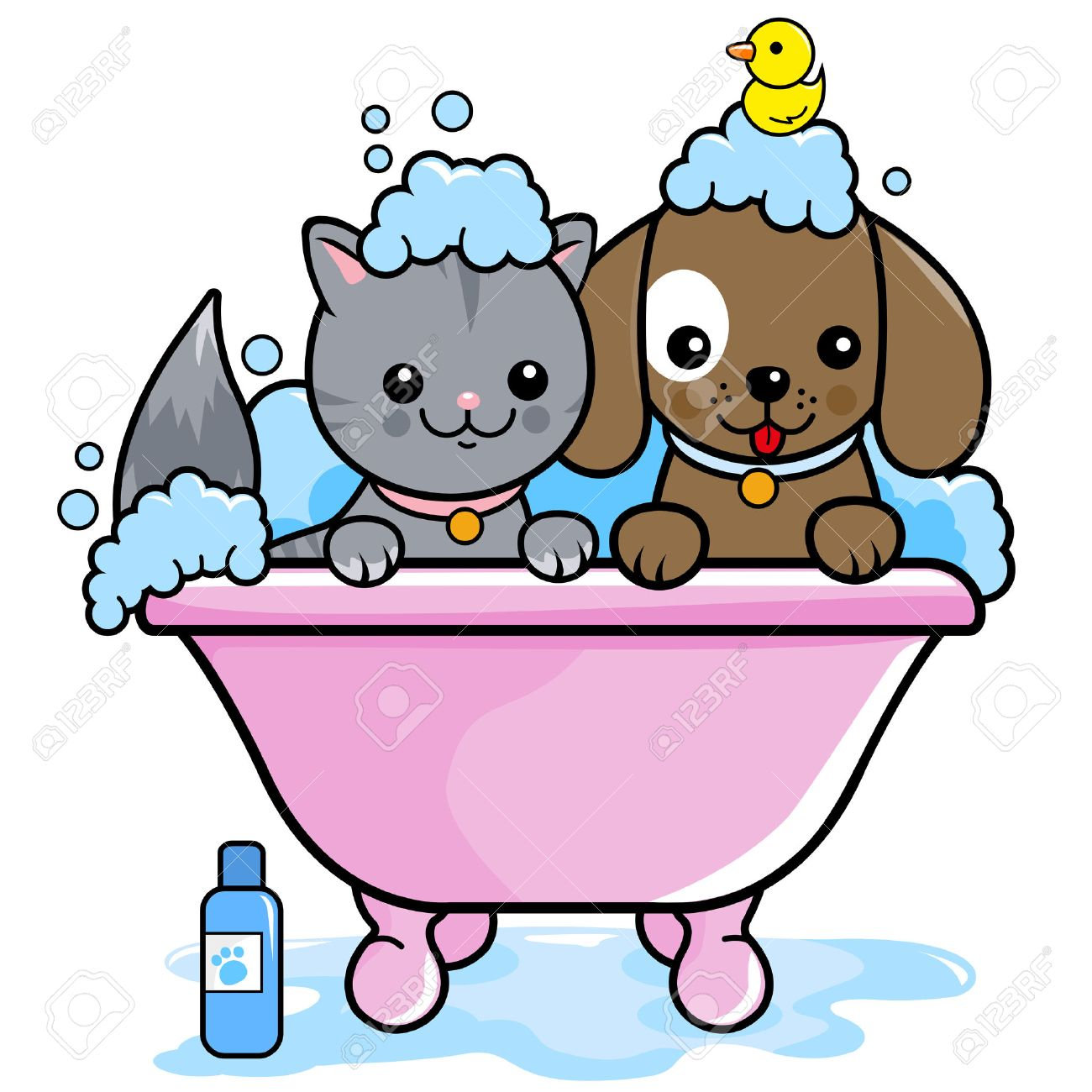 Dog and a cat in a tub taking a bubble bath. - 45529514