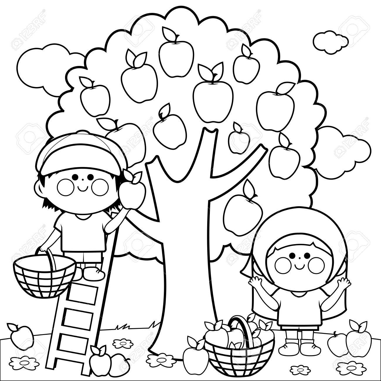 kids harvesting apples coloring book page royalty free cliparts