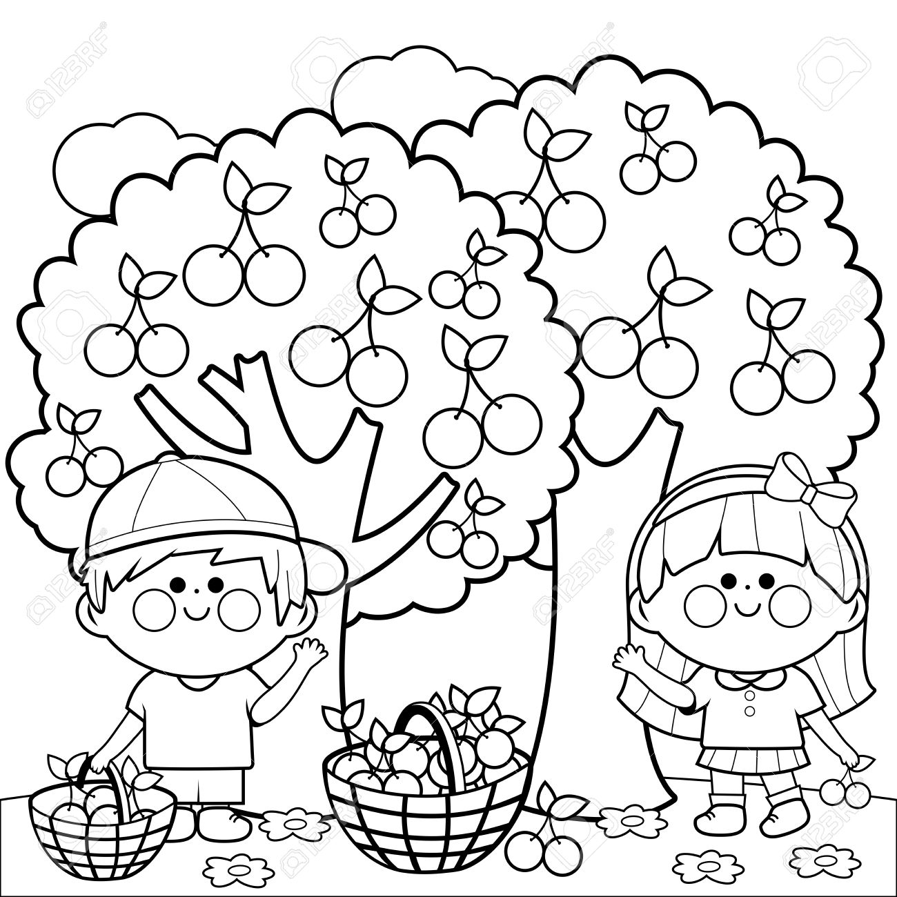 kids harvesting cherries coloring book page royalty free cliparts