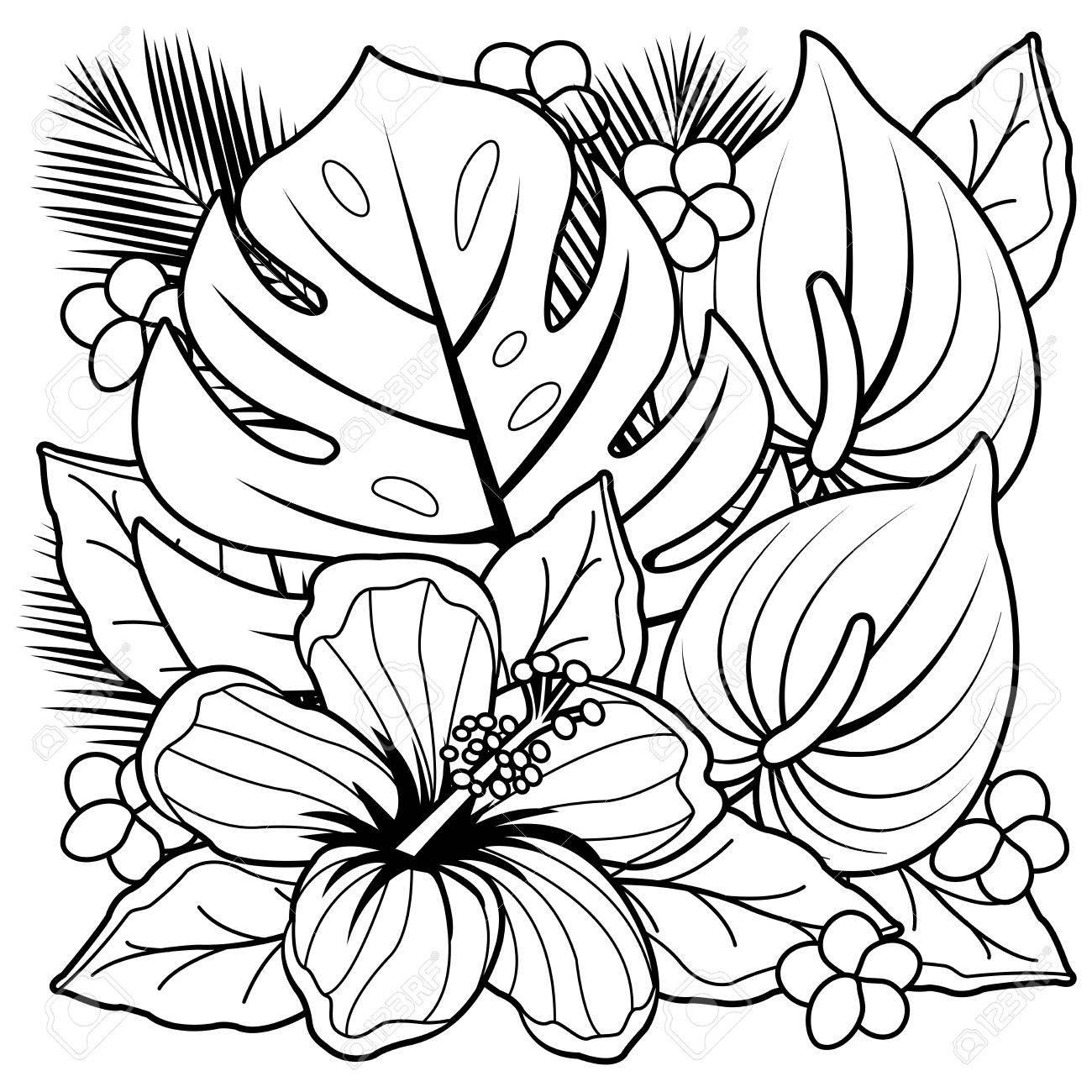Plantas Tropicales Y Flores De Hibisco. Página Para Colorear En
