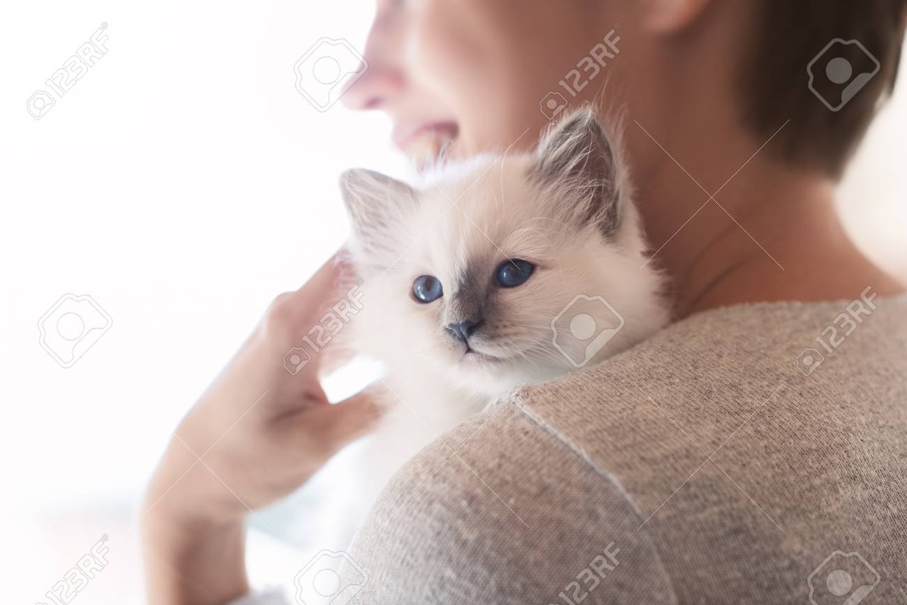 Young smiling woman hugging and cuddling her cute newborn kitten, pets and lifestyle concept - 91831665