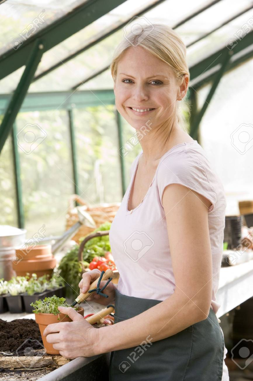Woman in greenhouse raking soil in pot smiling Stock Photo - 3461076