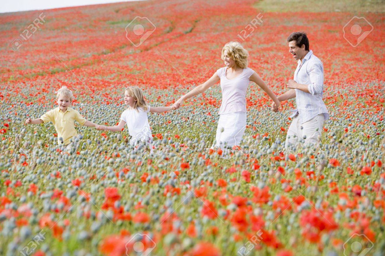 Family walking in poppy field holding hands smiling Stock Photo - 3600408