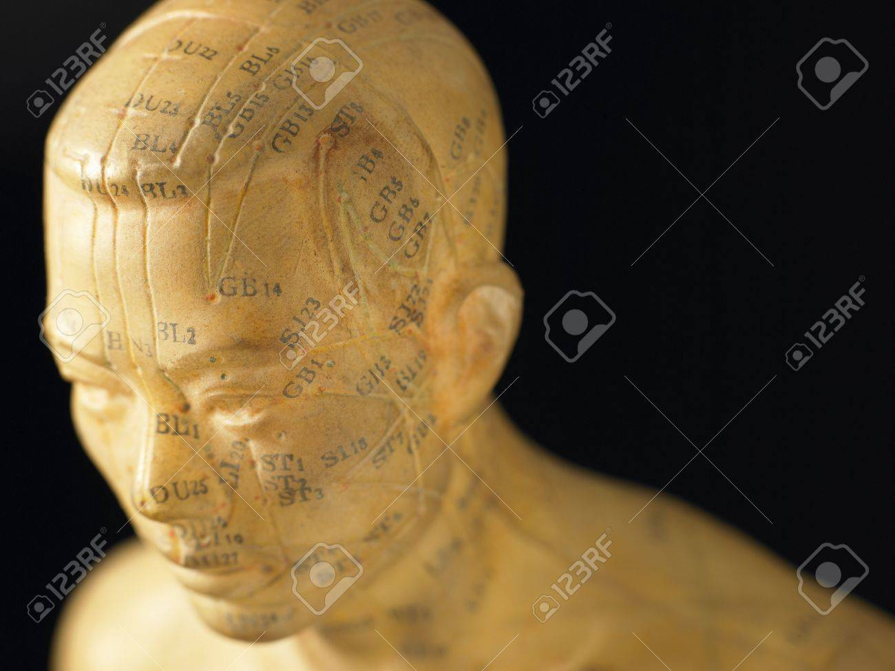 Meridian Lines On An Acupuncture Figurine Stock Photo - 4639022