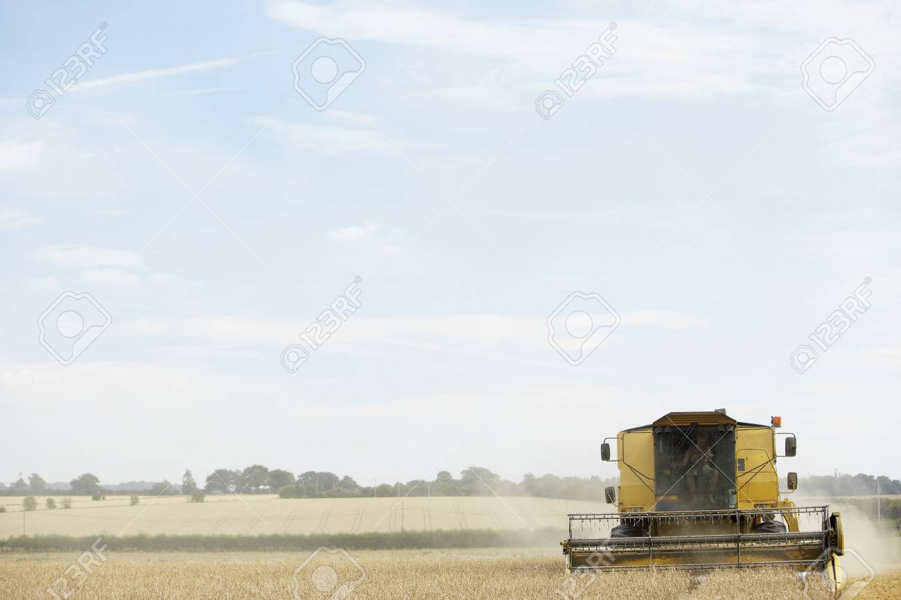 Combine Harvester Working In Field Stock Photo - 5040671