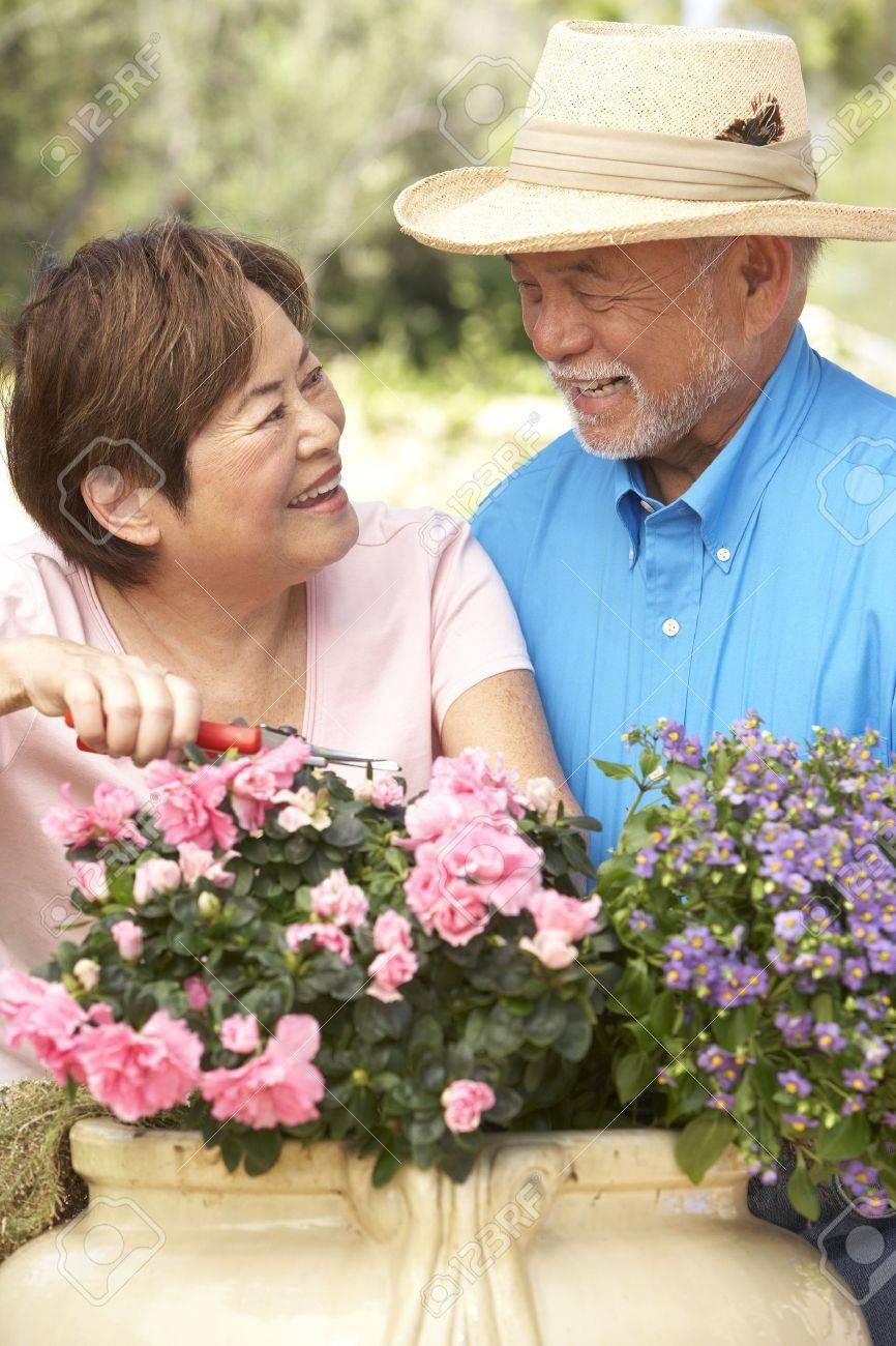 Senior Couple Gardening Together Stock Photo - 6142752