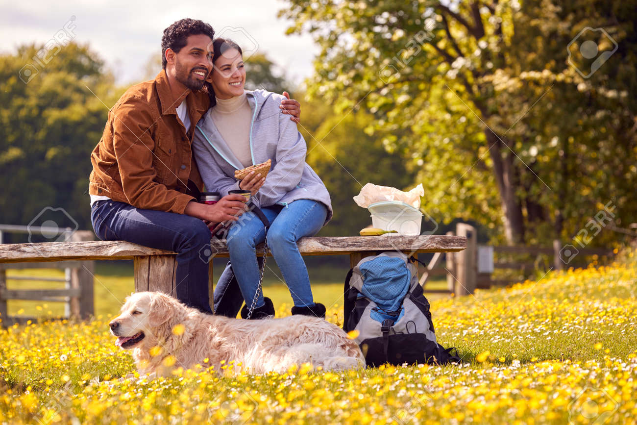 Couple With Pet Golden Retriever Dog On Walk In Countryside Sit On Bench And Enjoy Picnic Together - 171585860