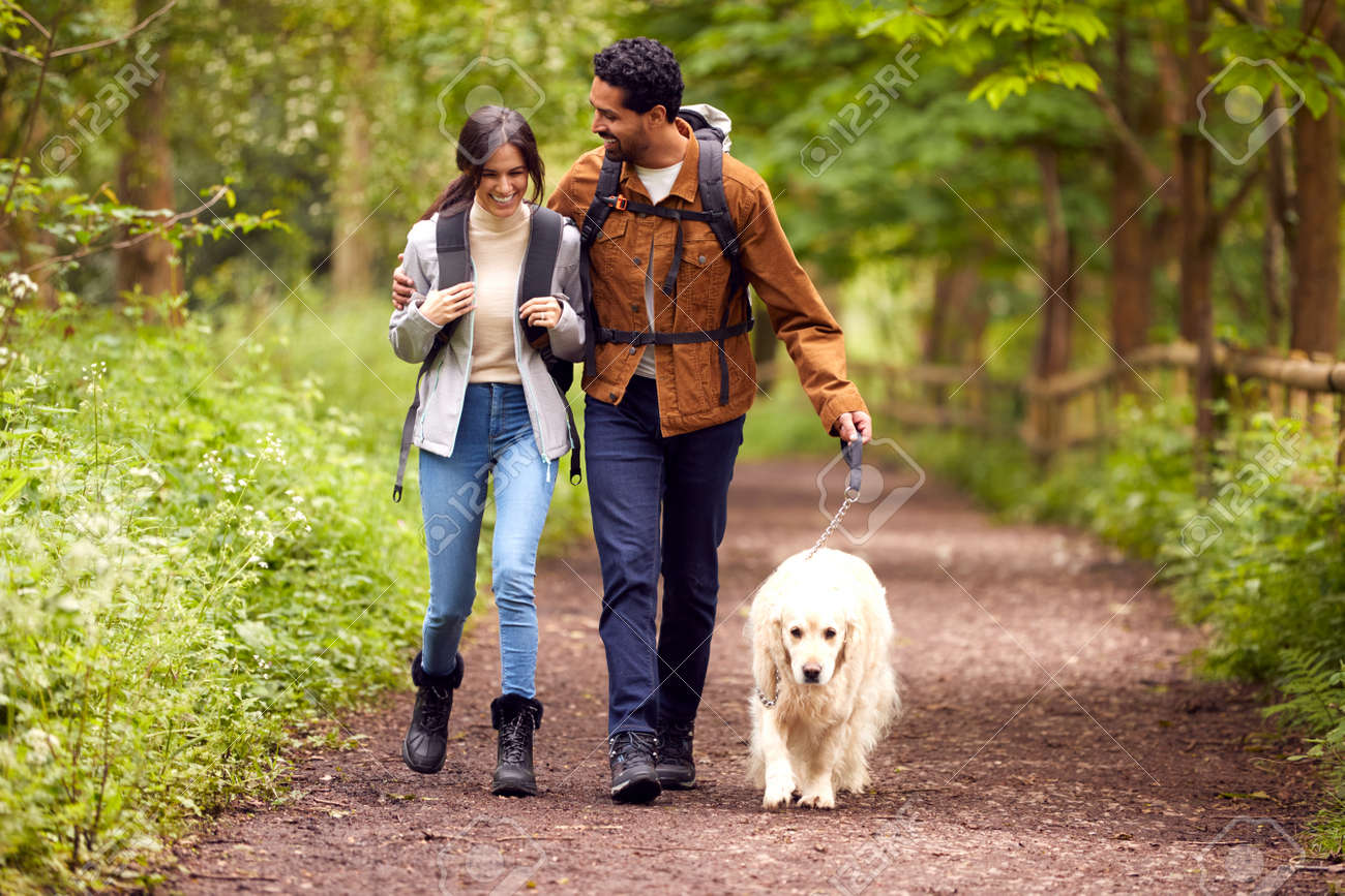 Couple With Pet Golden Retriever Dog Hiking Along Path Through Trees In Countryside - 171585937
