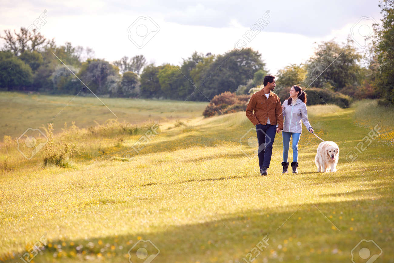 Couple With Pet Golden Retriever Dog Walking Along Path Across Field In Countryside - 171585941