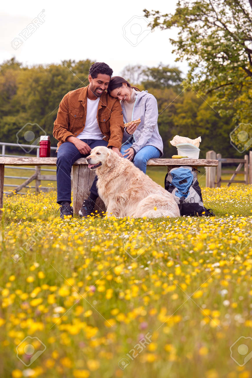 Couple With Pet Golden Retriever Dog On Walk In Countryside Sit On Bench And Enjoy Picnic Together - 171585966