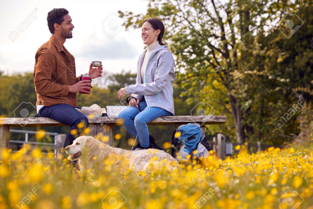 Couple With Pet Golden Retriever Dog On Walk In Countryside Sit On Bench And Enjoy Picnic Together - 171585968