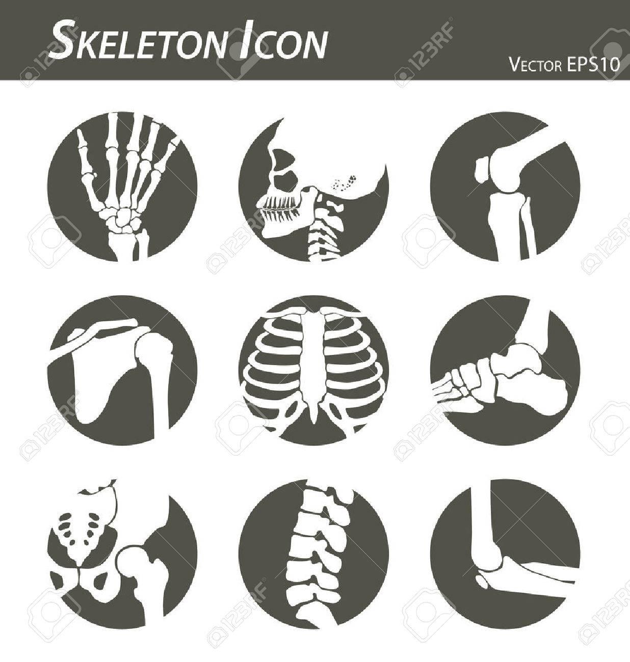 Skeleton icon - 64824552