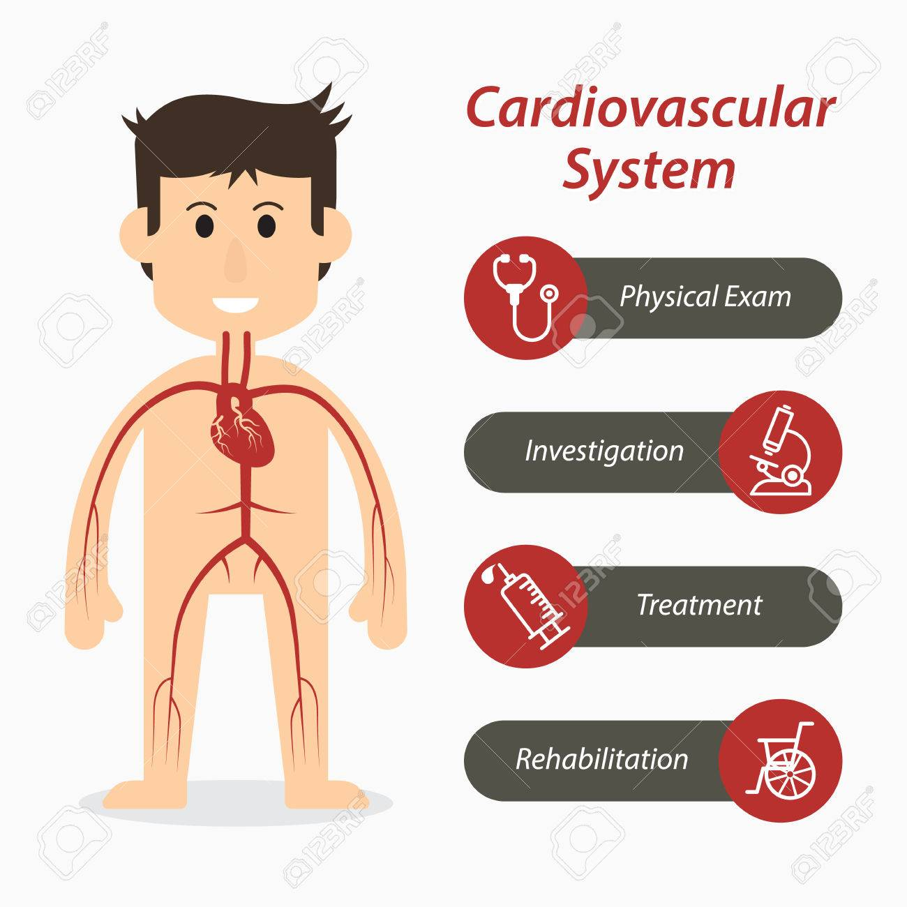 Cardiovascular system and medical line icon - 63892805