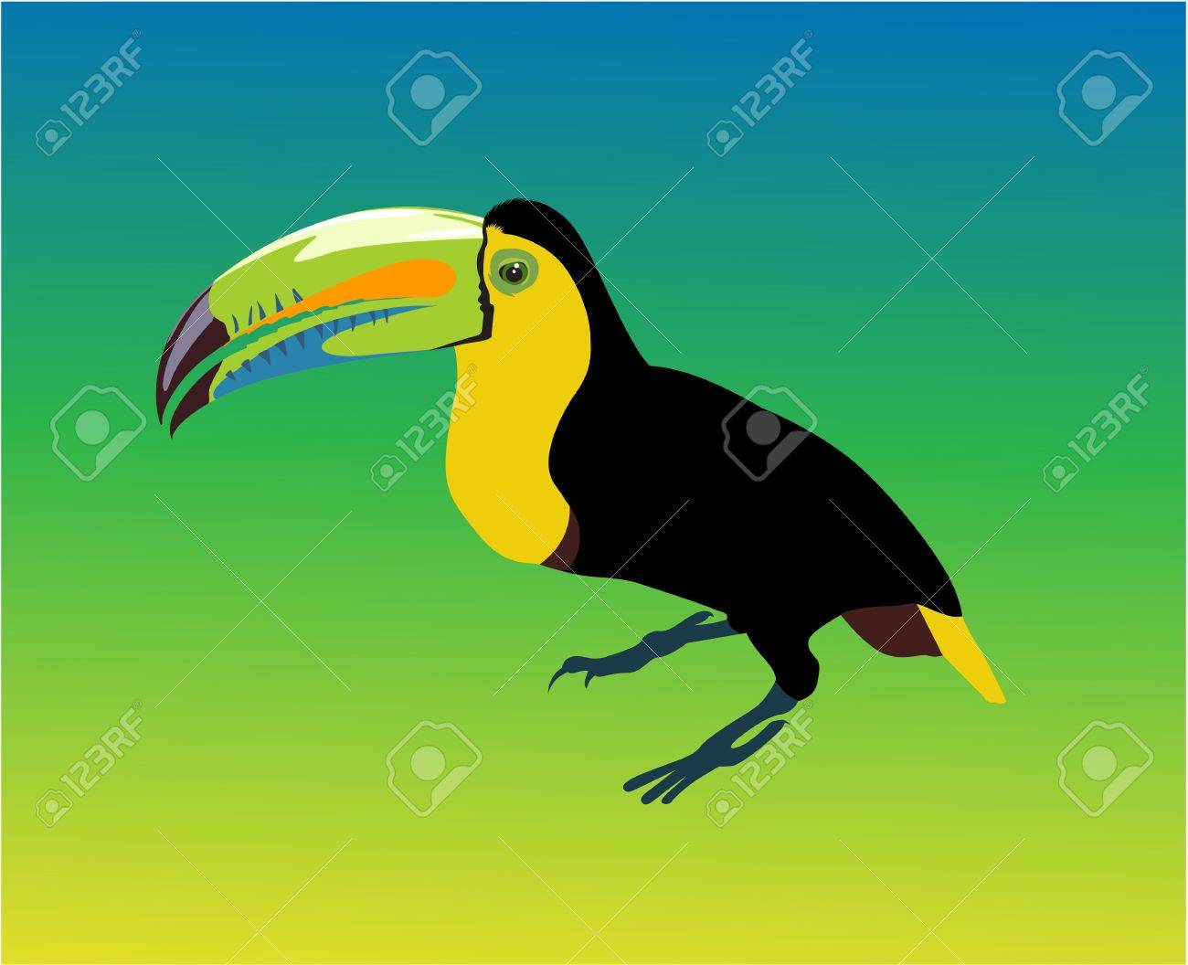 Variegated tucanucu parrot on the multicolour background Stock Vector - 13920229