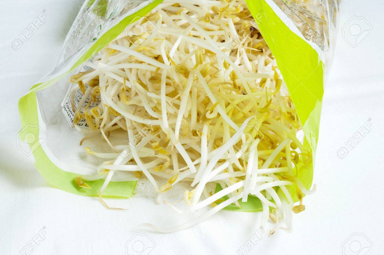 Fresh bean sprouts in plastic bag Stock Photo   32417950. Fresh Bean Sprouts In Plastic Bag Stock Photo  Picture And Royalty
