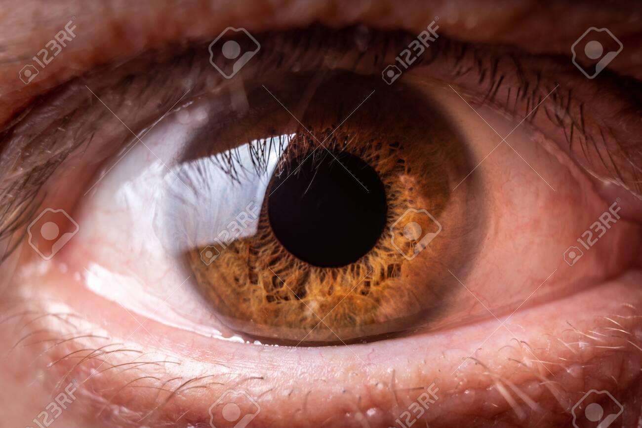 Brown human eye macro or close up photography - 141253933