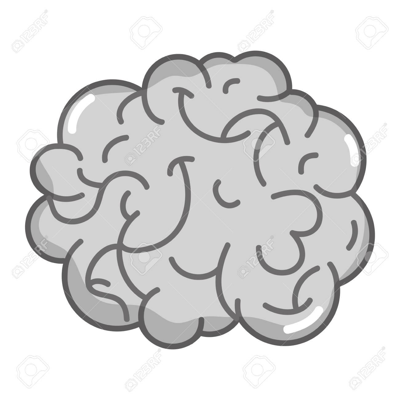 Anatomía Del Cerebro Humano En Escala De Grises A La Ilustración De ...